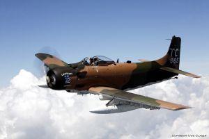 Douglas-Skyraider-A-1H-TIFF.jpg