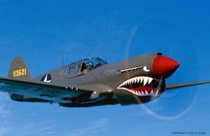 P40-Kittyhawk-1-TIFF-Copyri.jpg