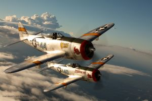Two-Ship-Thunderbolts-P47-T.jpg